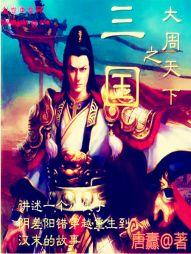 Tam Quốc Chi Đại Chu Thiên Hạ